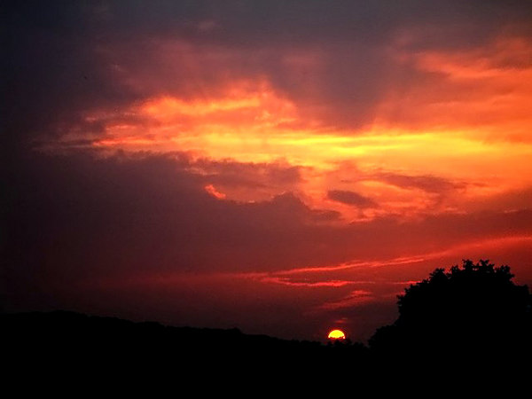 Sunset #1850.jpg