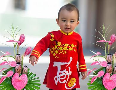 Vietnamese New Year 2018
