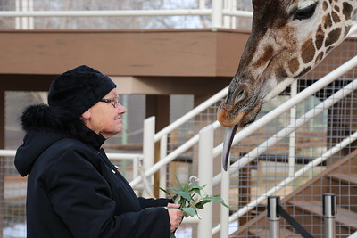 Kathy Visits the Denver Zoo for a Behind-the-Scenes Tour
