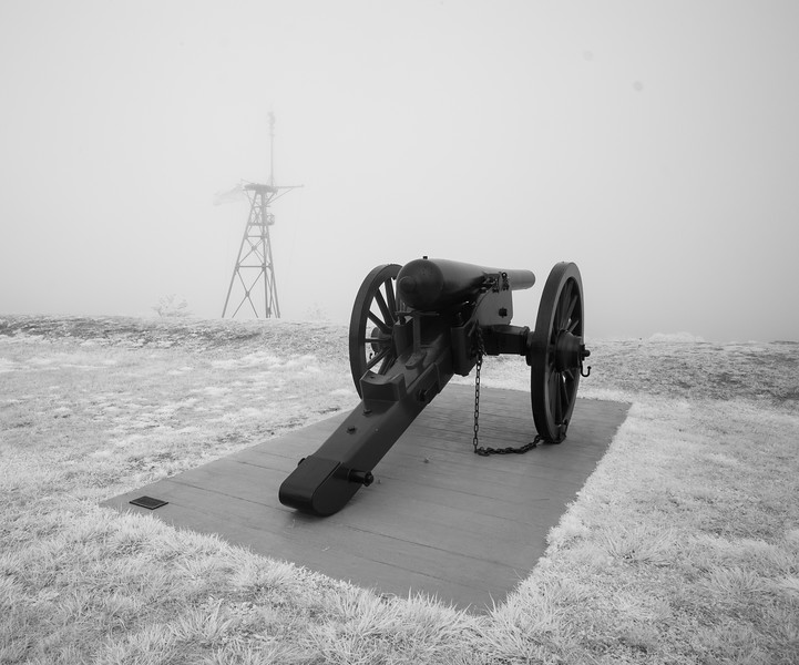 Foggy Fort Allen Park