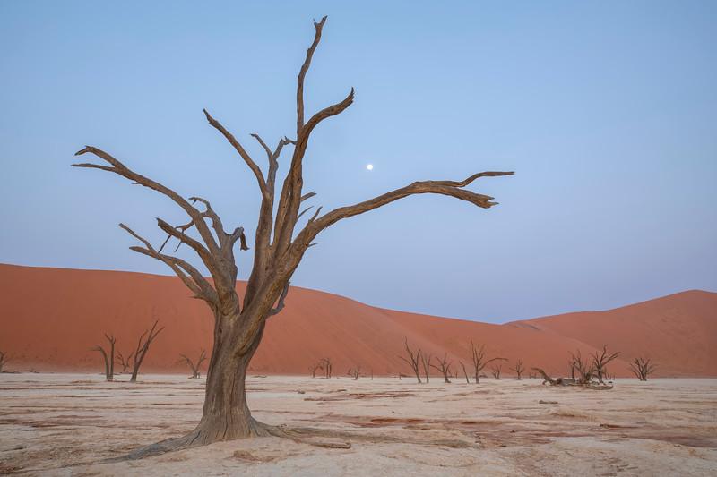 Namibia 69A5039.jpg