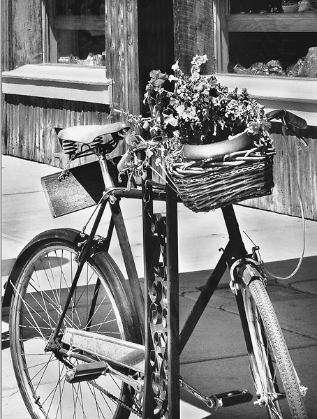 Old Bike with Flowers.jpg