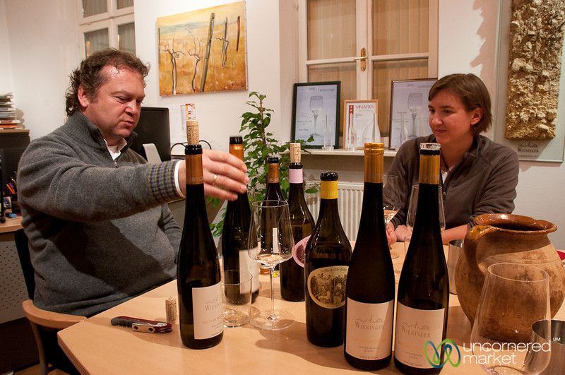 Wine Tasting at Wieninger Winery - Vienna, Austria