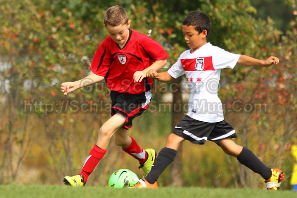 2013_Fall Soccer Lincolnshire LightningU10