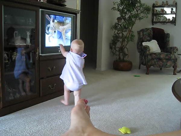 watching dog on TV.AVI
