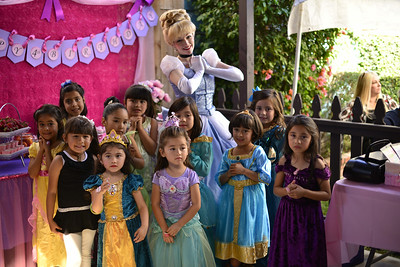 Ava's Princess Birthday Party