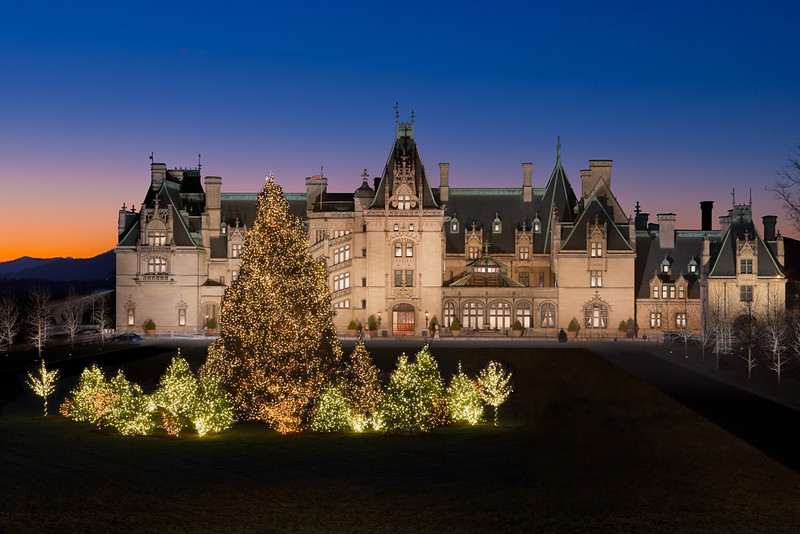 large mansion with bundle of christmas trees in front yard