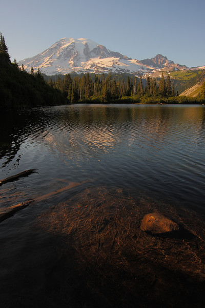 Mt. Rainier NP - Aug 201007.JPG