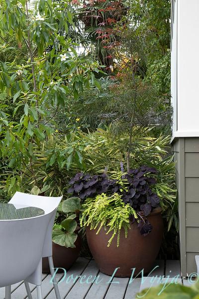 Lisa Bauer - designer's garden_1284.jpg