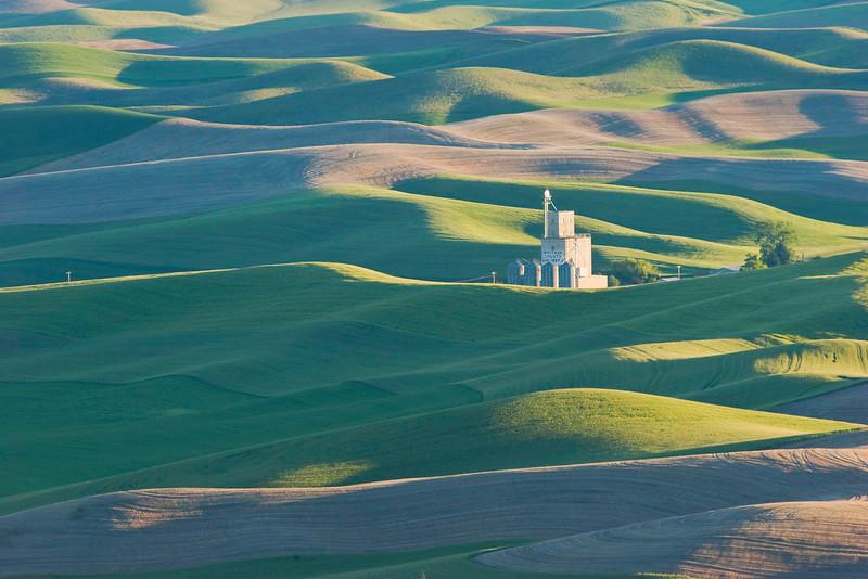 Morning light on wheatfields and granary, Washington