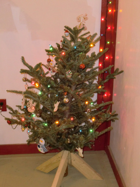 Brandon Brady's tree----check out the stand, does that shout contruction engineering????
