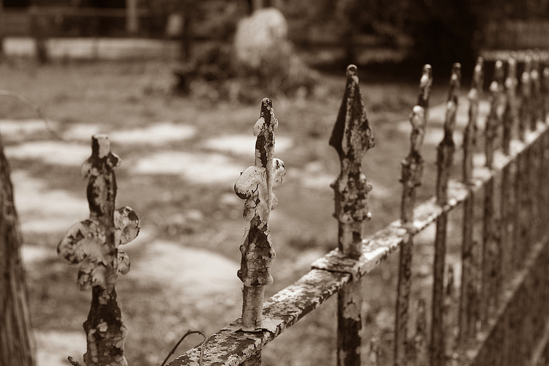 Old Fence Sepia