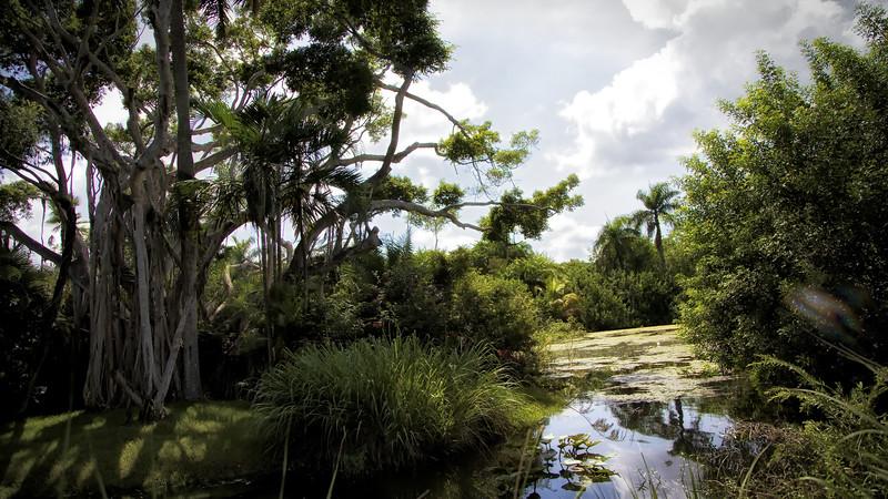 2014 Floride