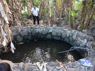 Freddy Cruz Drip Irrigation Project