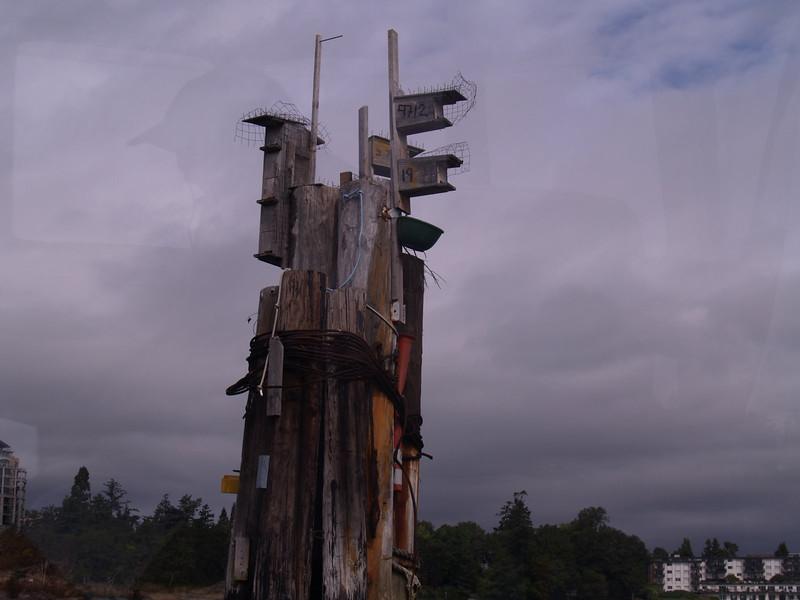 Interesting bird houses in the harbor