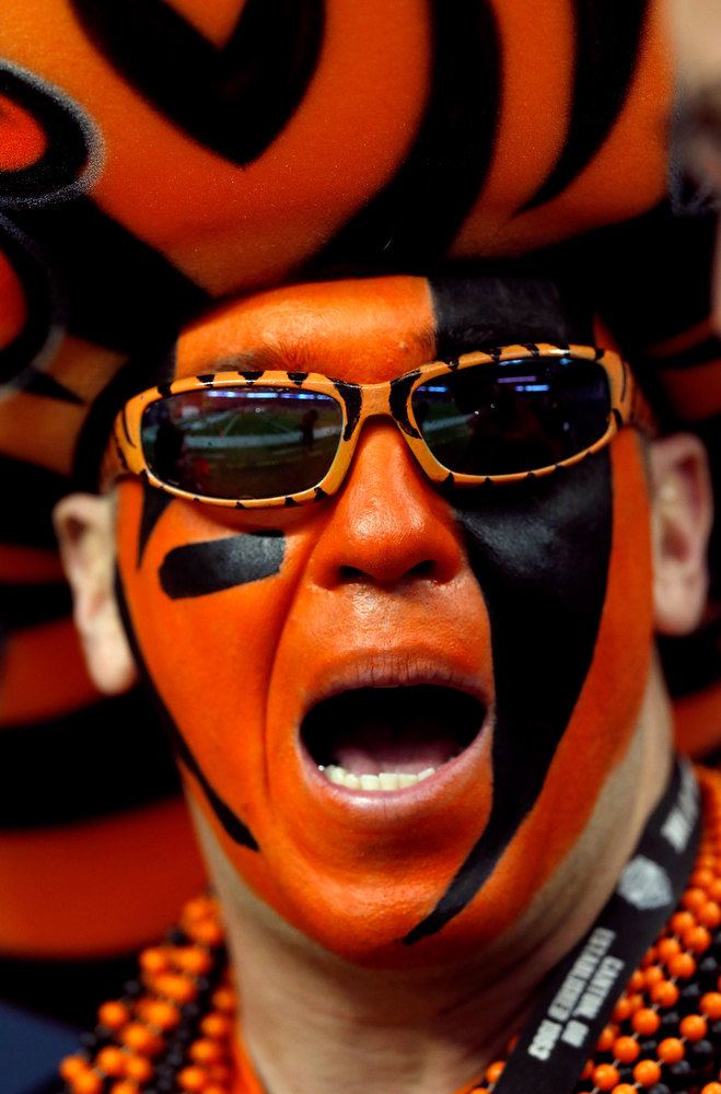 Description of . A fan of the Cincinnati Bengals supports his team against the Houston Texans during their AFC Wild Card Playoff Game at Reliant Stadium on January 5, 2013 in Houston, Texas.  (Photo by Scott Halleran/Getty Images)