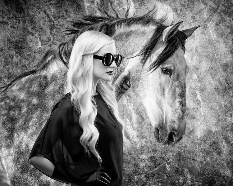 DEH_5992 Horse composite 2x3.jpg