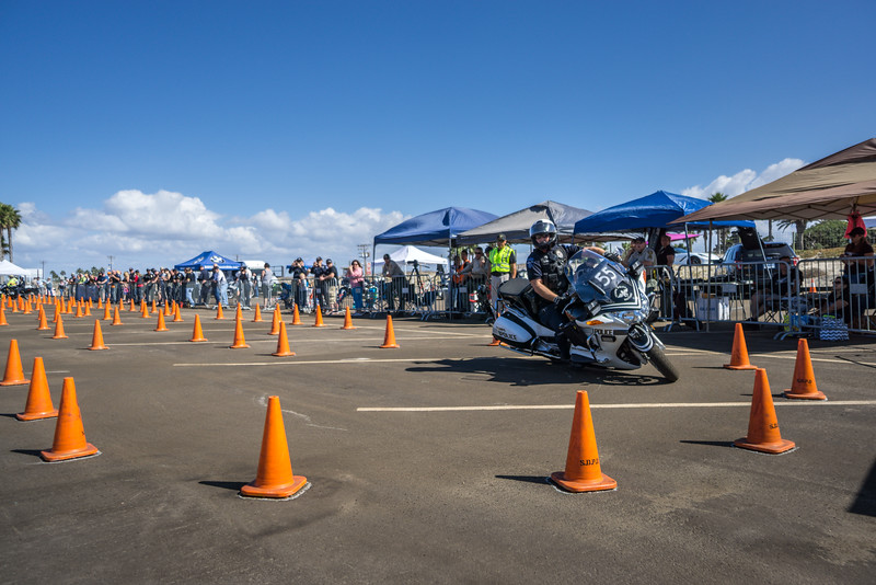 Rider 55-35.jpg