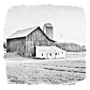 Wall Art - Farmhouse Collection