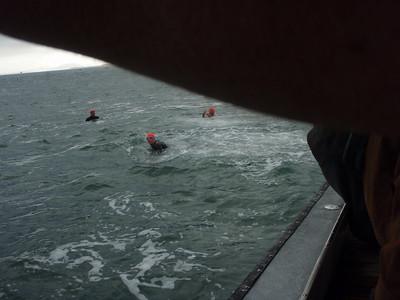 2010 Golden Gate Bridge Swim