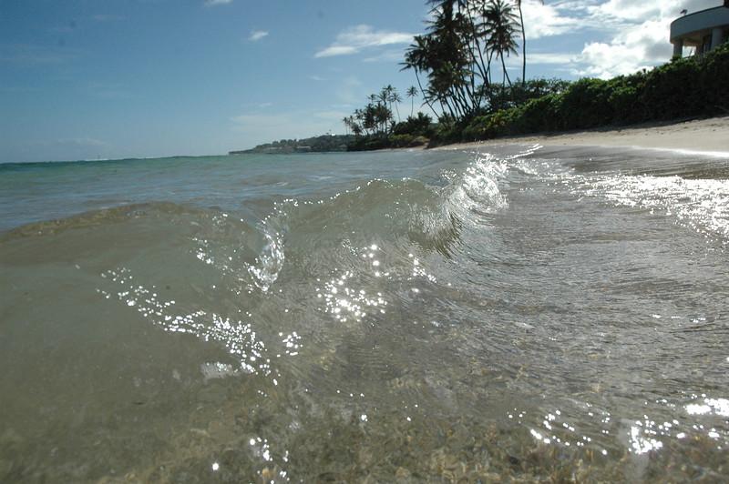Hawaii - Kahala Beach-78.JPG