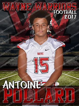 Senior Banners/Posters