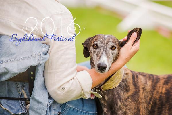 Donaueschingen Sighthound Festival 12/08/2016