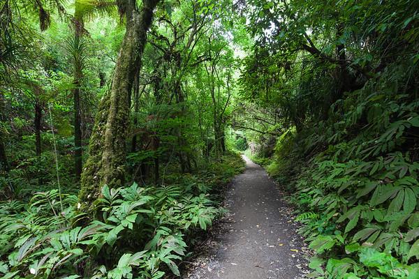 Hakarimata Scenic Reserve