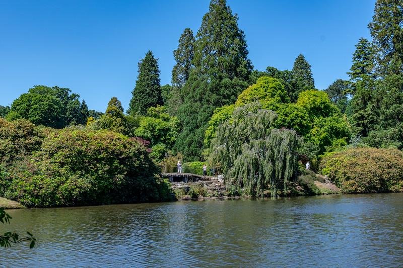 Sheffield Park Gardens (41 of 172).jpg