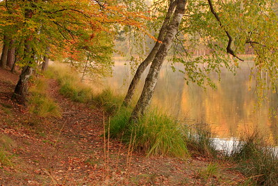 Autumn colors of Germany. © 2003 Kenneth R. Sheide