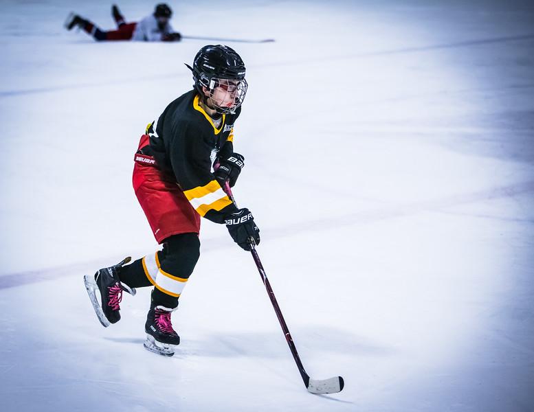 Bruins2-436.jpg