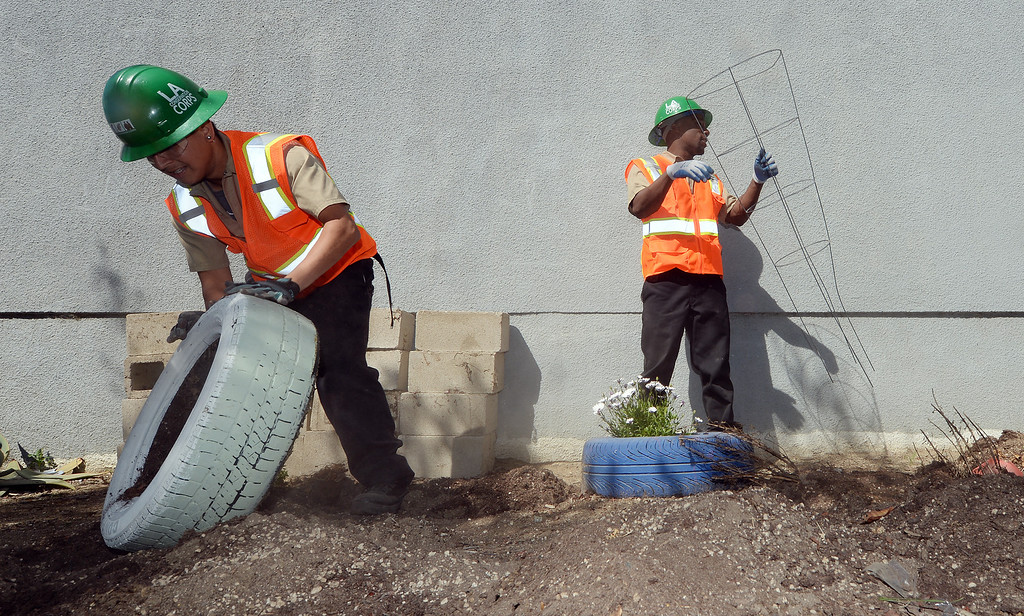 . Los Angeles Conservation Corps volunteers Brian Rodriguez (left), 22 from Los Angeles, and De Anthony Cole (right), 25 originally from Pomona, remove old tire planters at the Boys and Girls Club of Pomona Valley Monday. Approximately 40 volunteers including staffers of L.A. County Supervisor Gloria Molina\'s office, along with members of the Los Angeles Conservation Corps and some Chavez Week volunteers were at the Boys and Girls Club of Pomona Valley on Monday March 31, 2014 as a part of a beautification project.  (Will Lester/Inland Valley Daily Bulletin)