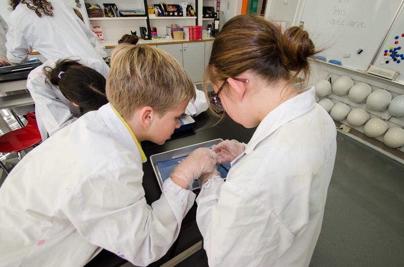 Grade 7 Science-27.jpg