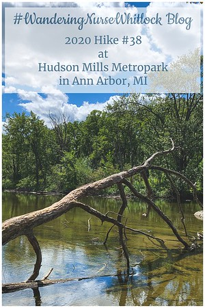2020 Hike #38 on August 19th at the Hudson Mills Metropark in Ann Arbor Michigan