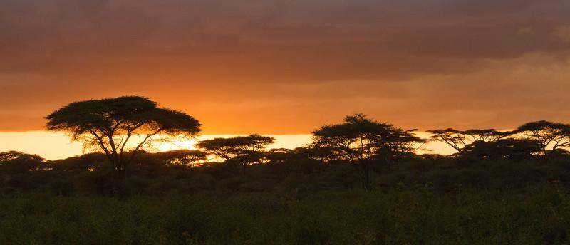Tanzania_2D4A4956-Edit.jpg