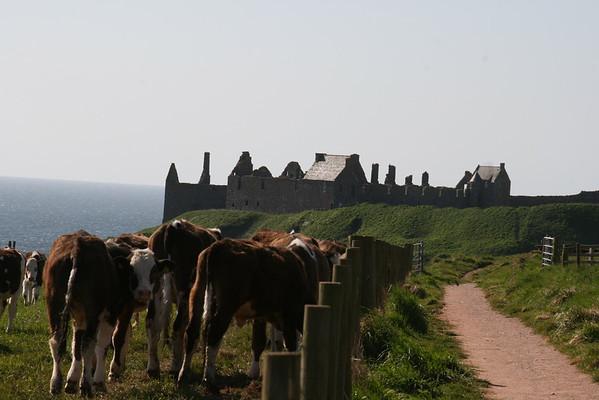 Scotland/Stonehaven