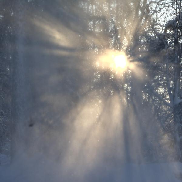 Tangled Light