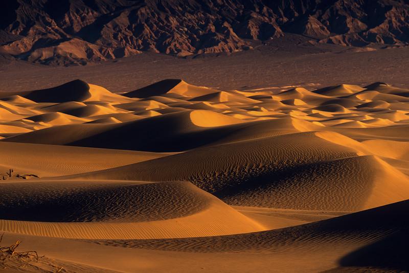 Dune 2 FB.jpg