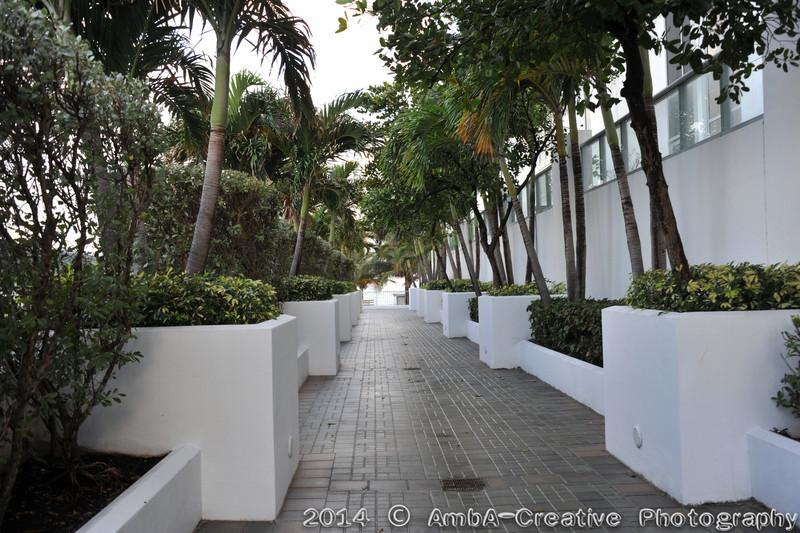 2014-02-08_HighSchoolReunion@MiamiFL_33.jpg