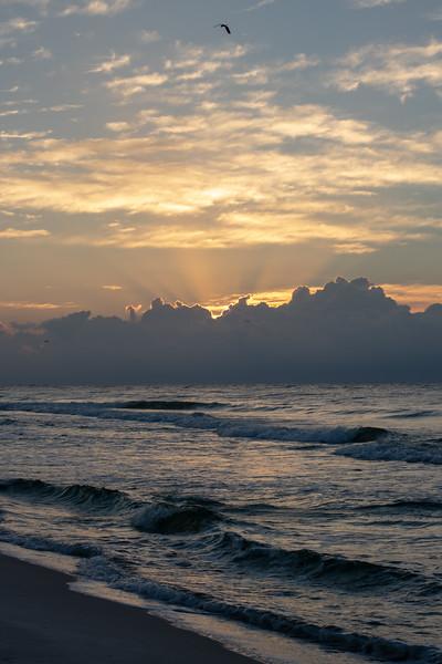 sunrise2-8134.jpg