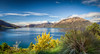 Lake Wakatipu in the Morning