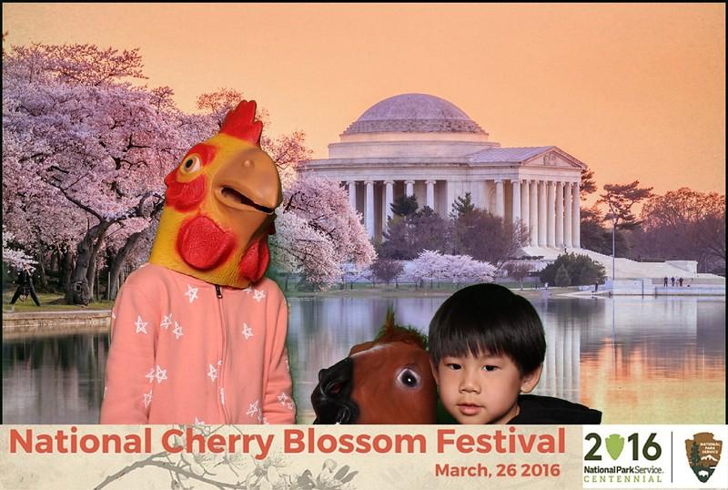 Boothie-NPS-CherryBlossom- (351).jpg