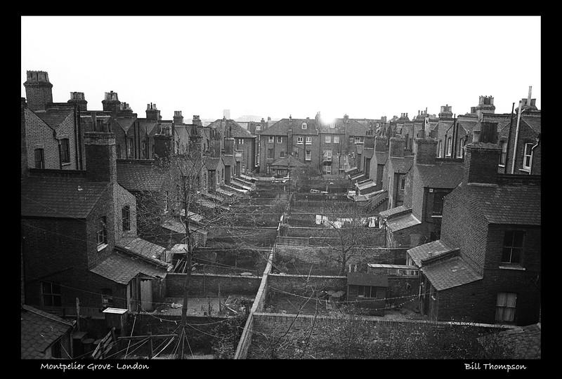 Montpelier Grove-LondonU.jpg