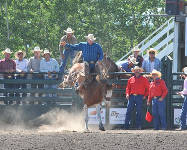 Saddle Bronc (Section 2)