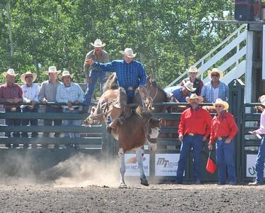 Saddle Bronc (Section 2)