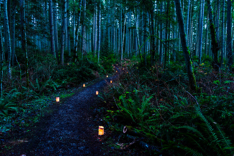 "Winter Solstice ""Luminary Path"" at Fisher Pond on Vashon Island"