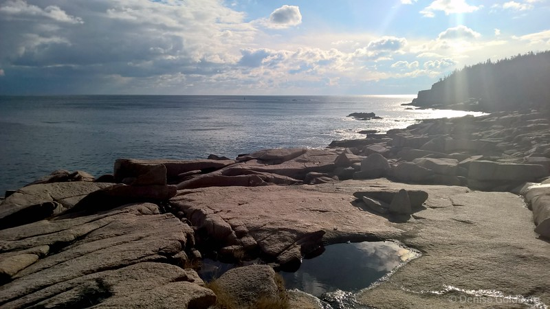 along the coast, in Acadia National Park