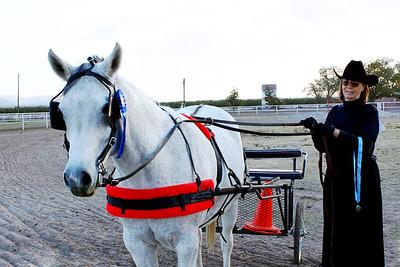 Arabian Horse Club of El Paso All Breed Challenge Show, Nov. 5-6, 2011