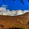 Fall Color in Rocky Mountain National Park