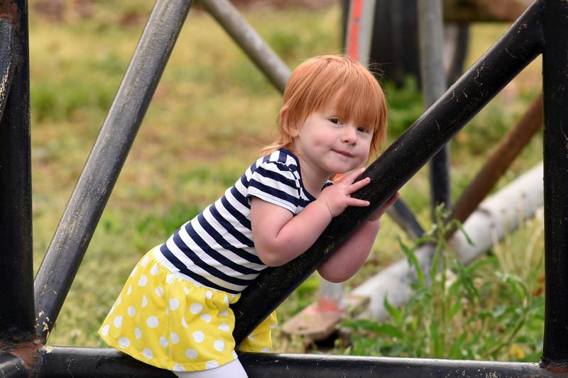 Greeneville Tenn Presley Farm April 2016_17.jpg